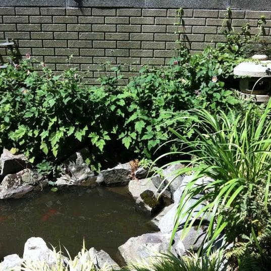 The little japanese zen garden garden in rego park for Little japanese garden