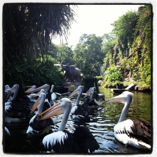 Photo taken at Kebun Binatang Ragunan by Ingmar v. on 6/17/2012