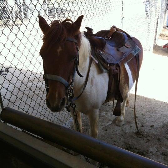 Photo taken at Griffith Park Pony Rides by ♚♤F̲̅a̲̅L̲̅s̲̅O̲̅e̲̅♤♚̲ L. on 7/10/2012