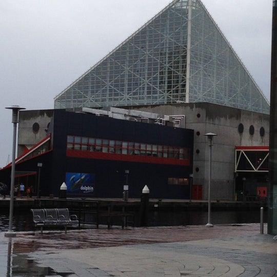 Photo taken at National Aquarium by Samantha E. on 9/9/2012