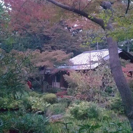 Photo taken at Nezu Museum by M K. on 11/5/2011