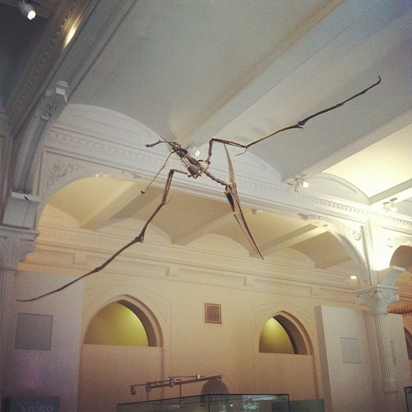 Photo taken at David H. Koch Dinosaur Wing by Danielle M. on 8/7/2012