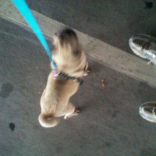 Photo taken at PetSmart by Wm. Cory Jeffries, LMT NMT on 3/6/2012