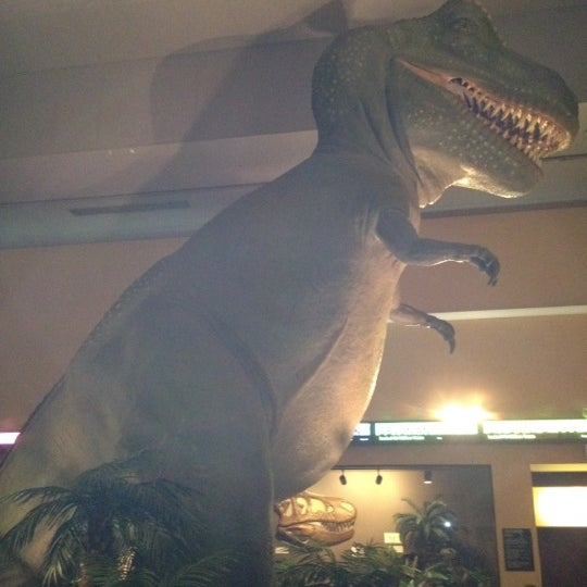 Springfield Museum Of Natural Science