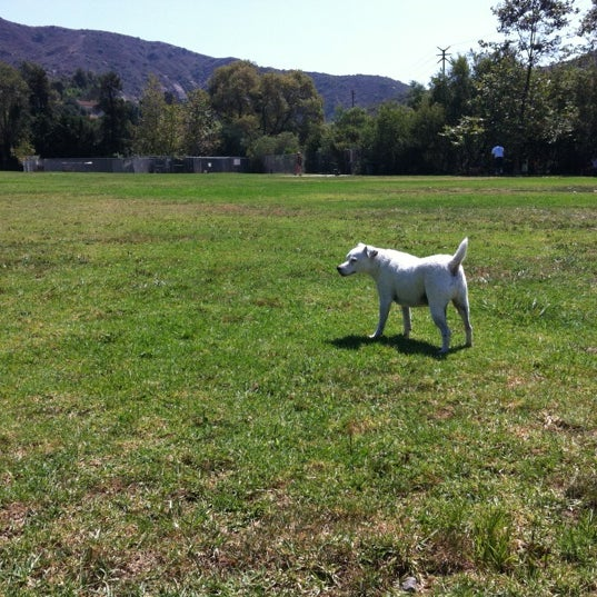Photo taken at Laguna Canyon Dog Park by BURTON on 8/20/2012