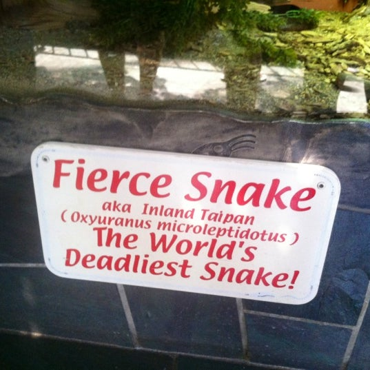 Photo taken at Reptile Gardens by Kelsey P. on 8/18/2012
