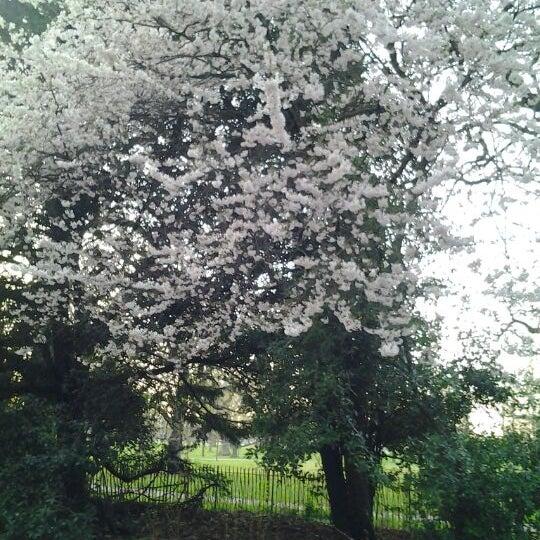 Photo taken at Kensington Gardens by Daria G. on 3/25/2012