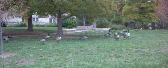 Photo taken at Antioch Park by Alexis C. on 10/6/2012