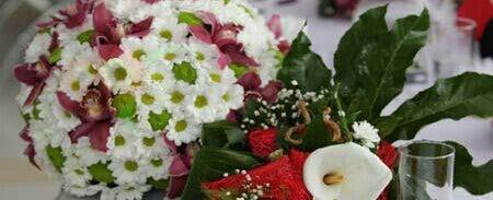 Photo taken at Online cvećara Garden shop by Siniša P. on 6/20/2012
