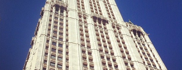 Woolworth Building is one of Historic Tallest Buildings in the World.