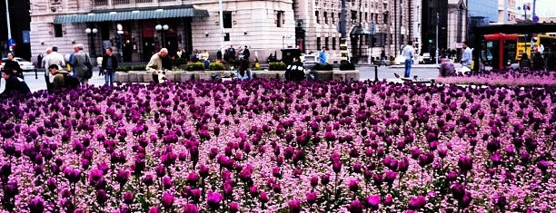 Trg republike is one of Parks and city squares in Belgrade.