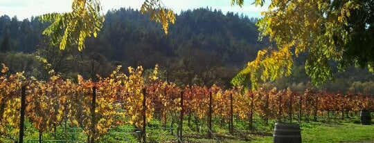 Amista Vineyards is one of Especially Pet-Friendly Wine Road Members.