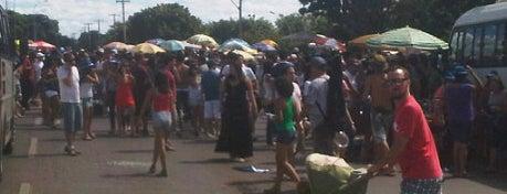 Festas tradicionais de Brasília