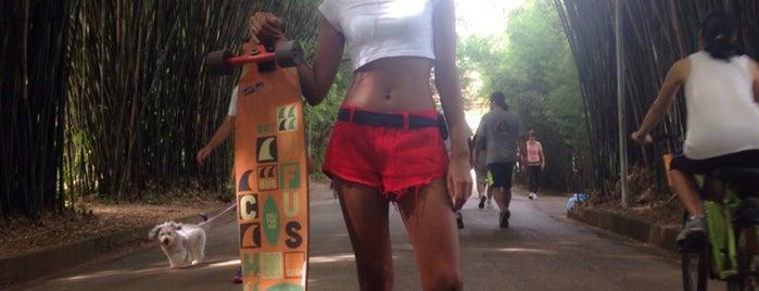 Parque Ibirapuera is one of Raquel's tips.