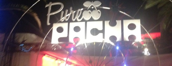 Pacha is one of P.A.T.T. (Party All The Time) !!.