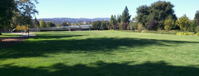 Kevin Moran Park is one of South Bay.