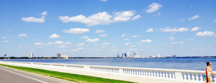 Bayshore Park is one of Princess' Tampa Hot Spots!.