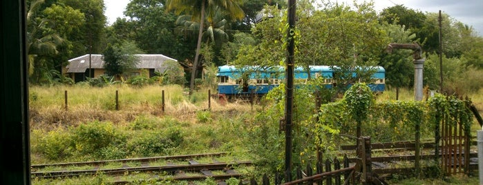 Maho Junction Railway Running Shed is one of Railway Stations In Sri Lanka.