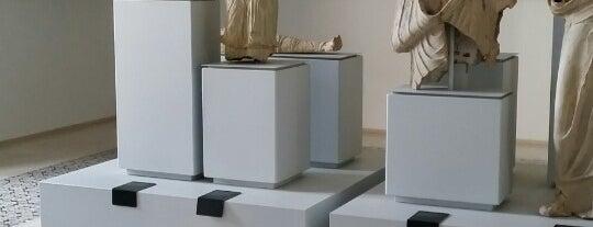 Museo Civico Archeologico - Lucera is one of lucera.