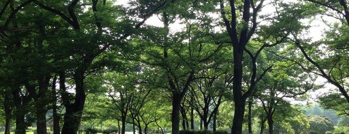 田園公園 is one of 公園.