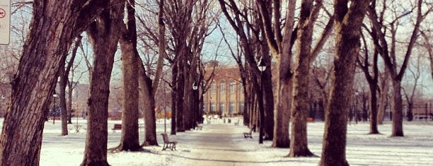 Parc Sir-Wilfrid-Laurier is one of Parc sympa MTL.