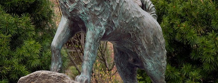 Jonathan the Husky Statue is one of UConn's tips.