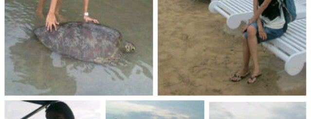 Turtle Island (Pulau Penyu) is one of Places to Visit in BALI.