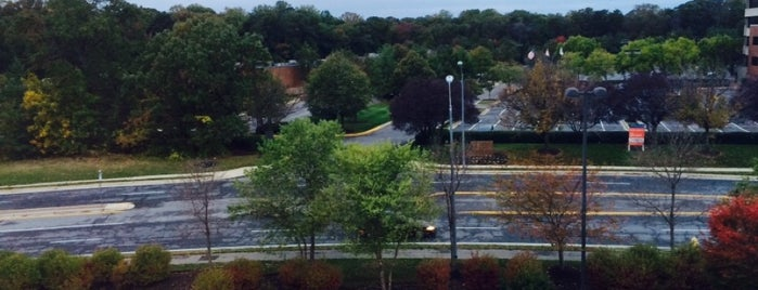 SpringHill Suites Annapolis is one of Maryland Green Travel Hotels and Inns.
