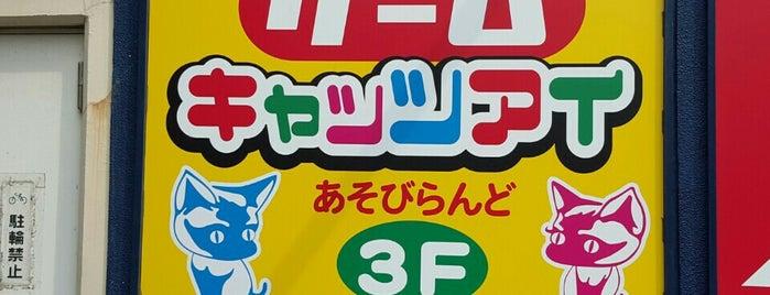 キャッツアイ西葛西店 is one of beatmania IIDX 設置店舗.
