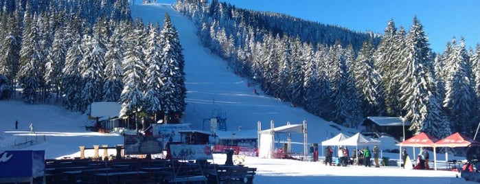Пампорово (Pamporovo) is one of Ski Zones.