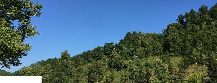 茶志内PA(下り/旭川方面) is one of 道央自動車道.