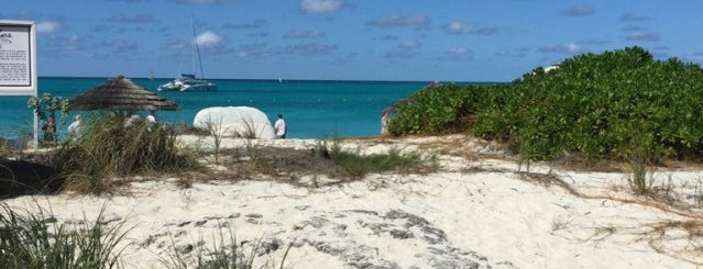 The Beach is one of Turks and Caicos.