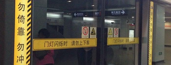 Changqing Rd. Metro Stn. is one of 上海轨道交通7号线 | Shanghai Metro Line 7.