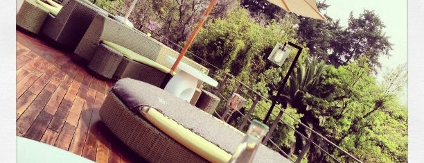 Condesa DF (Roof Lounge) is one of Editor's Choice.