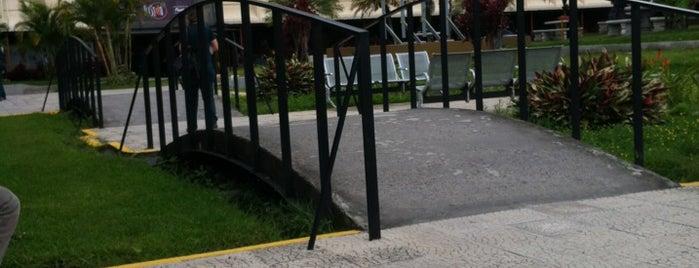 Universidad Internacional de las Americas (UIA) is one of Favoritos <3.