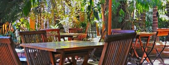 Must-visit Cafés in Caracas