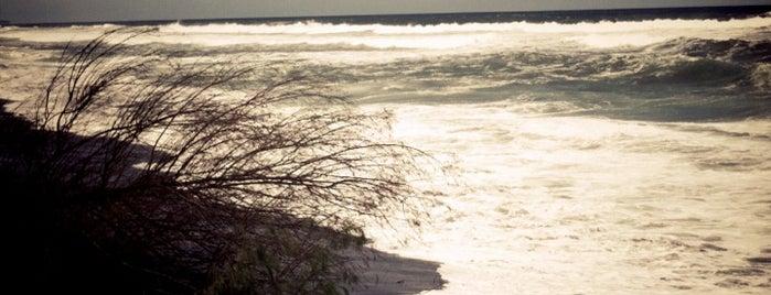 Pantai Kuwaru is one of Bimo's tips.
