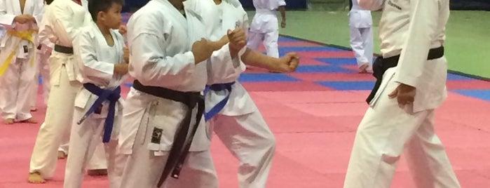 Dubai Karate Club is one of Best places in Dubai, United Arab Emirates.