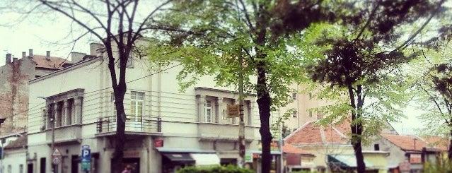 Park Vojvode Bojovića is one of Parks and city squares in Belgrade.