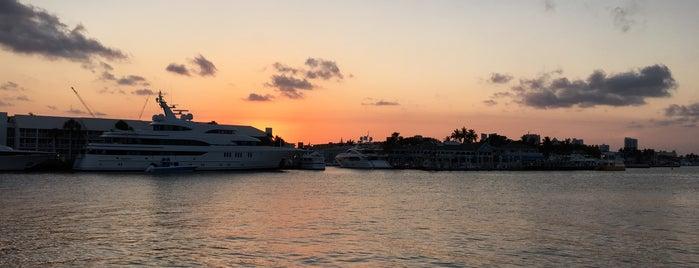 Pelican Landing is one of Peewee's Big Ass South Florida Food Adventure!.
