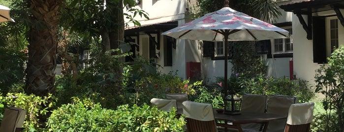 Villa Belle Epoque is one of Cairo's Best Spots & Must Do's!.