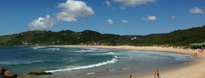 Praia Mole is one of sem perímetro.