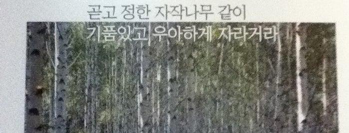세실극장 is one of 문화예술광장's Event.