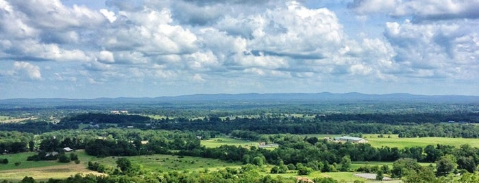 Bluemont Vineyard is one of Best DC Wineries According to The Washington Post.