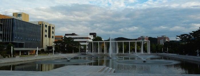 Hanyang University is one of University.