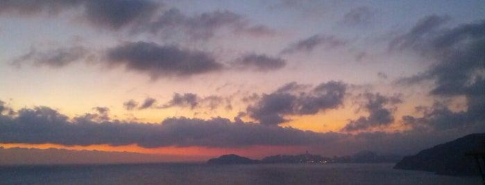 Saffron is one of Acapulco.