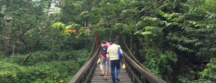 Hutan Lipur Sekayu is one of @Hulu Terengganu.