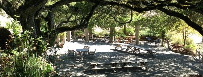Matanzas Creek Winery is one of Daily Sip Deals.