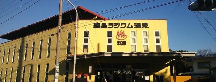綱島ラジウム温泉 東京園 is one of Tokyo Onsen.