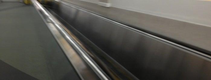 Concourse A is one of Cincinnati Airport.